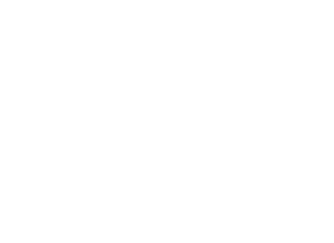 Event section